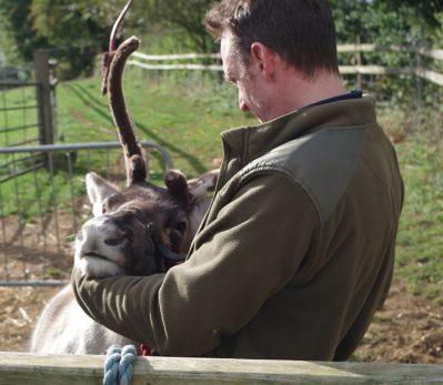 Reindeer Whisperer Our Services