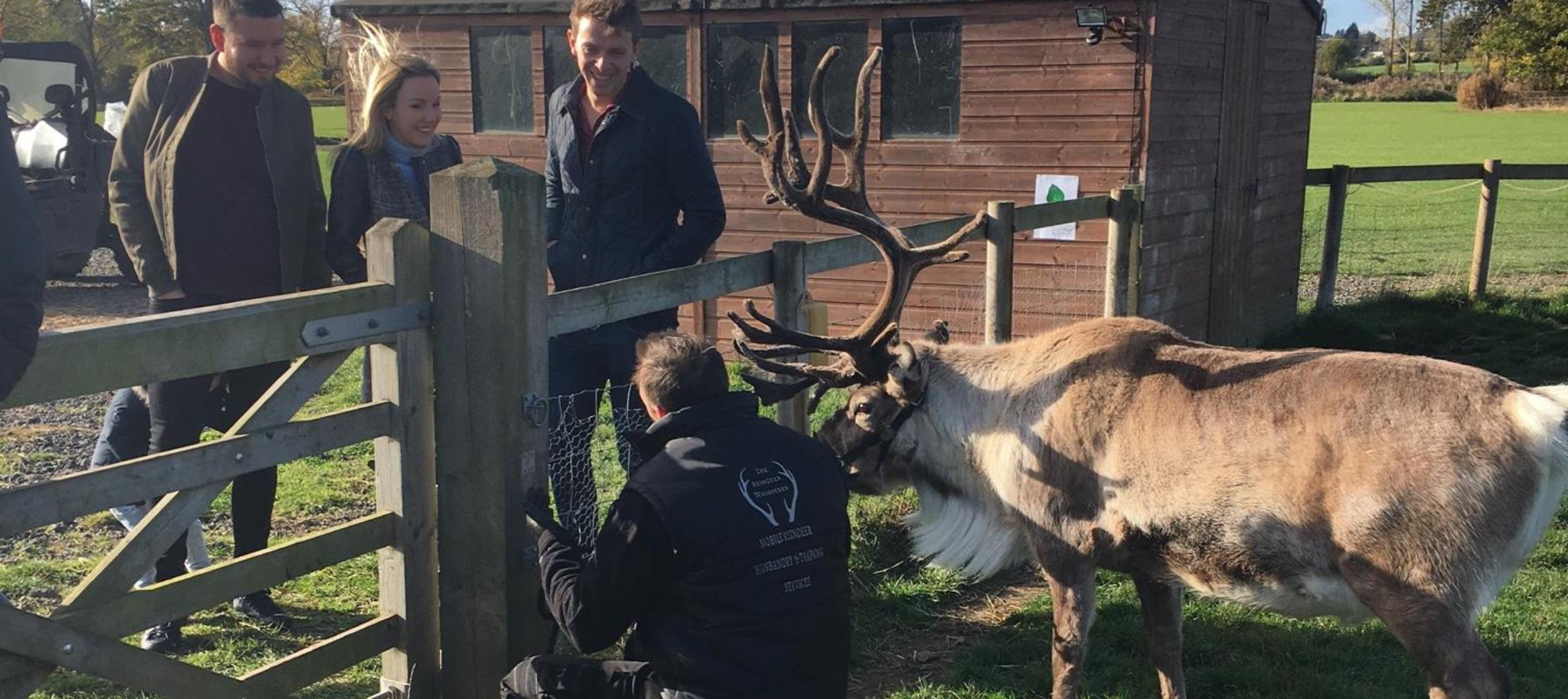 Reindeer Whisperer Services to your gate